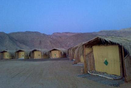 Al tarek camp huts