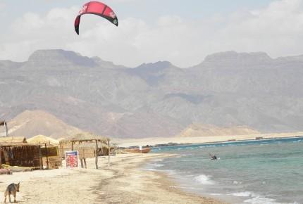 Windsurfing Sinai